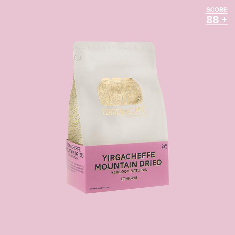 Café de spécialité en grain ou moulu |Yirgacheffe Mountain Dried | Terres de Café