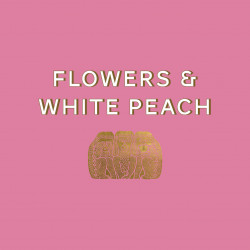 Café de spécialité en grain ou moulu | Geisha Genesis Yellow Honey  | Terres de Café