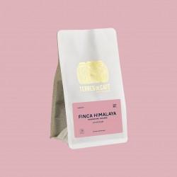 Specialty coffee by Terres de Café - Finca Himalaya Maragogype