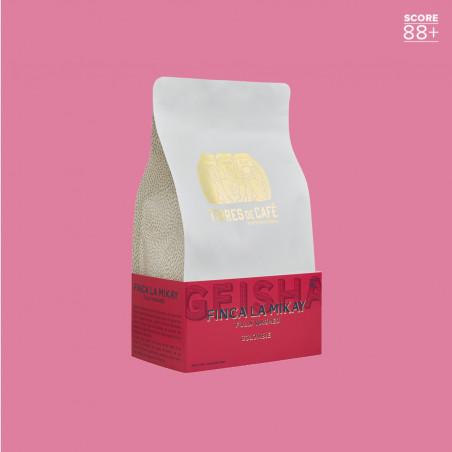 Café de spécialité en grain ou moulu |Finca La Mikay | Terres de Café