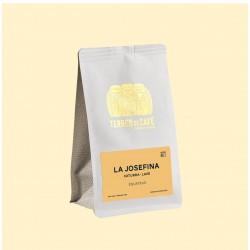 café de spécialité Terres de café - Café La Josefina - Caturra lavé
