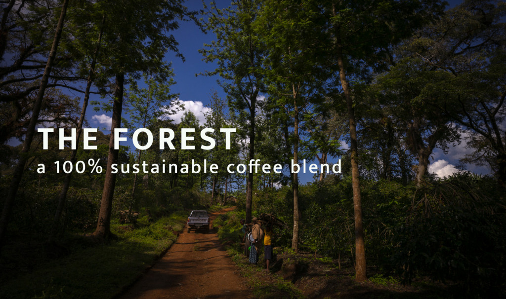 THE FOREST, a 100% sustainable coffee blend
