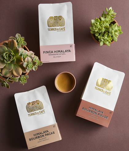 Award winning coffees